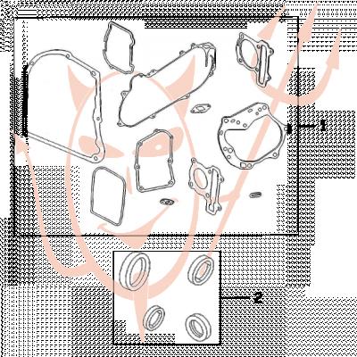 4-Takt Motor (139-QMB) 50 ccm - Dichtungssatz