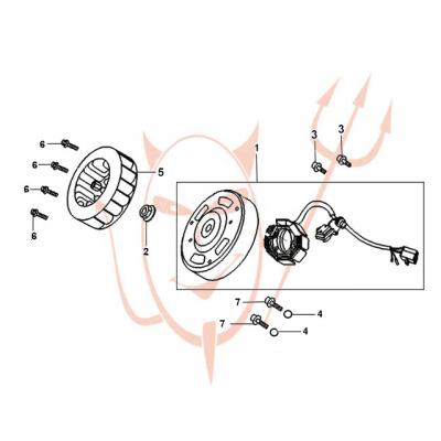 4-Takt Motor (139-QMB) 50 ccm - Lichtmaschine